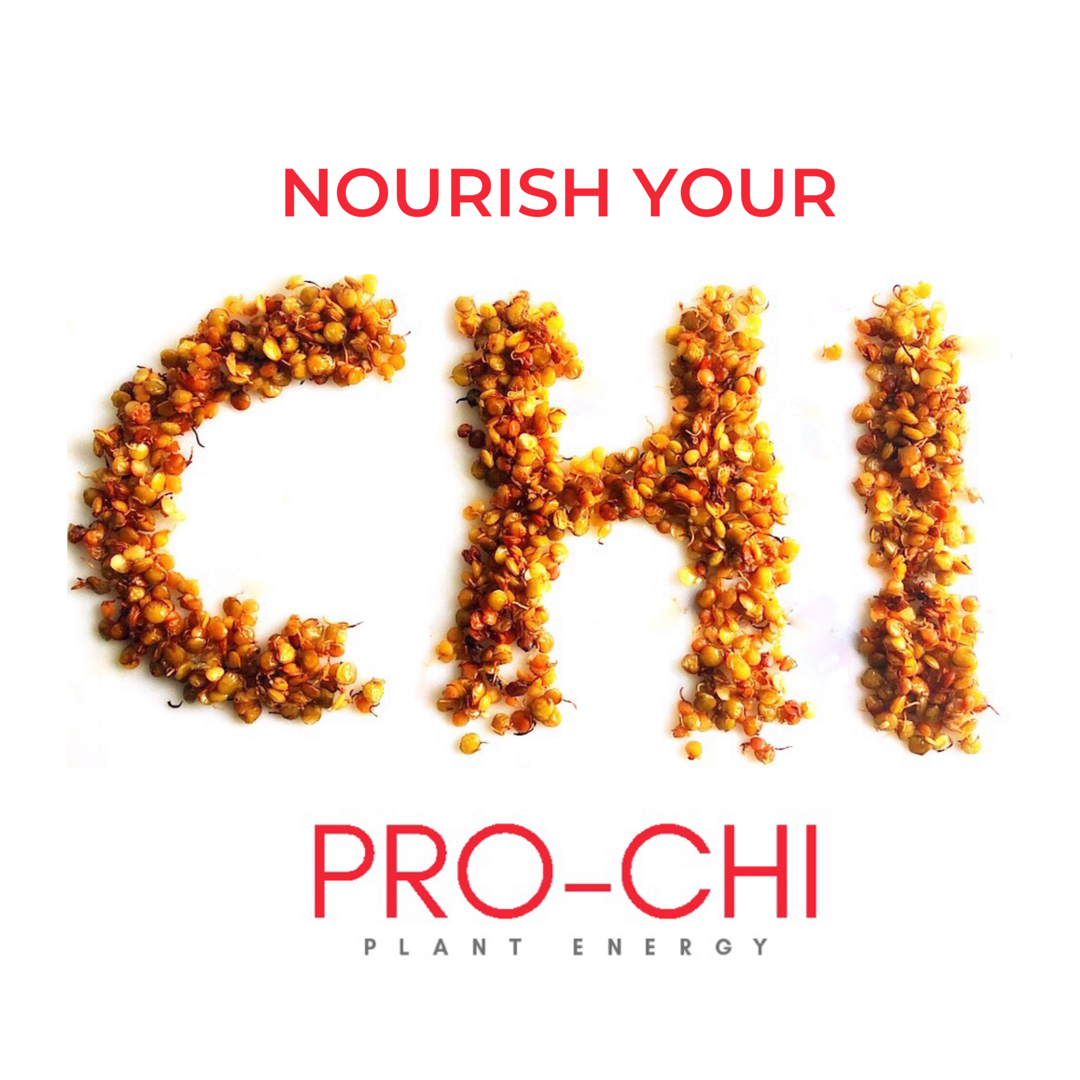 Nourish Your Chi with Protein